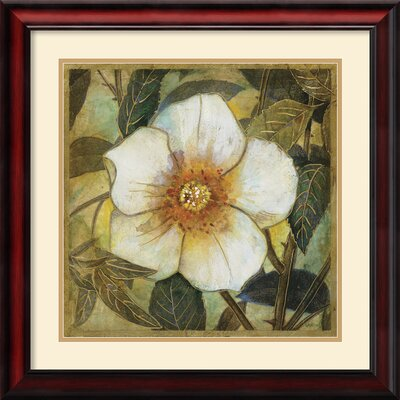 Amanti Art White Magnolia I Framed Print by Danson