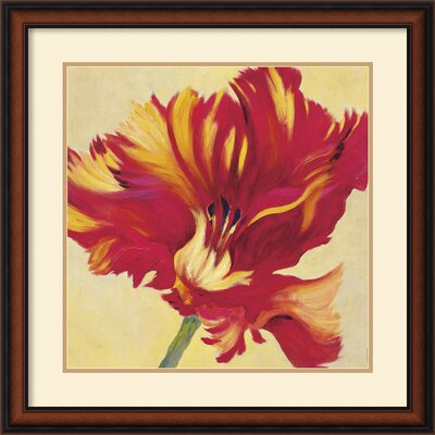 Tulipan Three Framed Print by Jennifer Hollack
