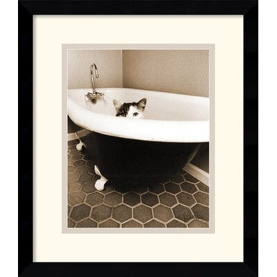 Amanti Art Kitty III Framed Print by Jim Dratfield