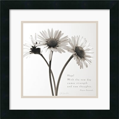 Amanti Art Daisy Hope Framed Print by Deborah Schenck
