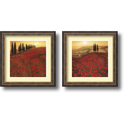 Amanti Art Poppies Framed Print by Steve Thoms (Set of 2)