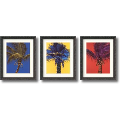 Amanti Art Bold Palm Framed Print by Robert Charles Dunahay (Set of 3)