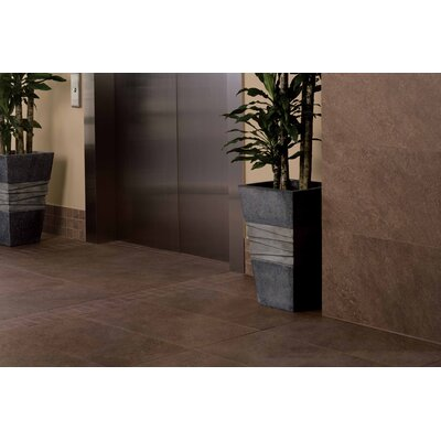 "American Olean Allora 18"" x 36"" Light Polished Porcelain Tile in Marrone"