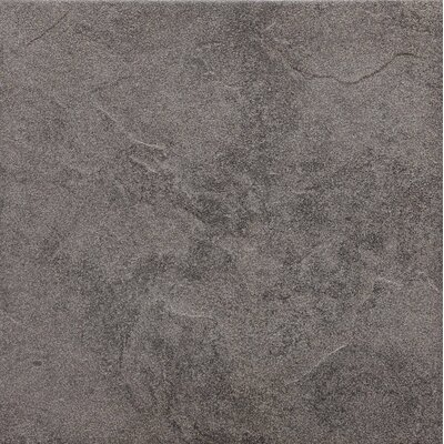 American Olean Shadow Bay 12&quot; x 12&quot; Porcelain Field Tile in Rocky Shore