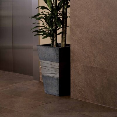 "American Olean Allora 18"" x 36"" Unpolished Porcelain Tile in Marrone"