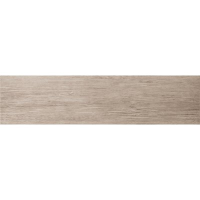 "Emser Tile Country 6"" x 24"" Porcelain Plank Tile in Francis"