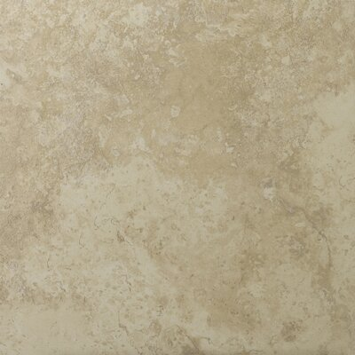 "Emser Tile Lucerne 20"" x 20"" Porcelain Floor Tile in Alpi"