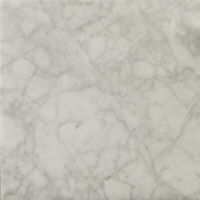 """Emser Tile Natural Stone 12"""" x 12"""" Honed Marble Field Tile in Bianco Gioia"""