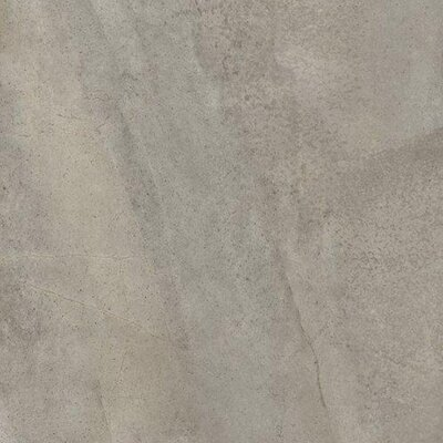 """Emser Tile Napa 12"""" x 12"""" Matte Porcelain Floor Tile in Grigio"""