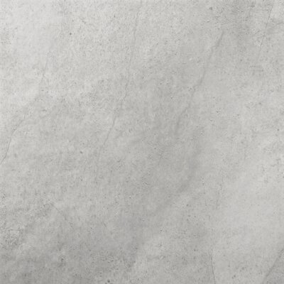 Emser Tile St Moritz 12 X 12 Glazed Floor Porcelain Tile In Silver