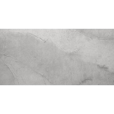 "Emser Tile St Moritz 12"" x 24"" Glazed Floor Porcelain Tile in Silver"