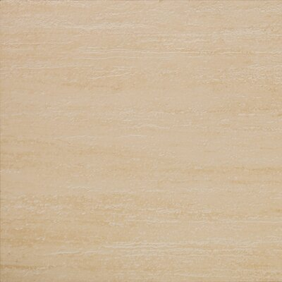 "Emser Tile Veracruz 24"" x 24"" Glazed Floor Tile in Campeche"