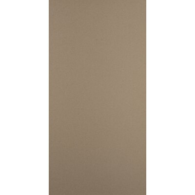 "Emser Tile Direction 24"" x 12"" Unglazed Polished Porcelain Tile in Magnitude"