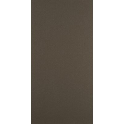 "Emser Tile Direction 24"" x 12"" Unglazed Polished Porcelain Tile in Quantum"