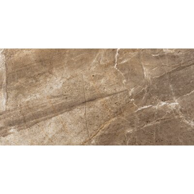 "Emser Tile Eurasia 12"" x 24"" Glazed Porcelain Tile in Noce"