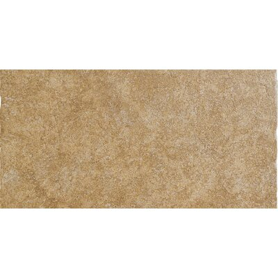 "Emser Tile Genoa 12"" x 24"" Glazed Porcelain Tile in Marini"
