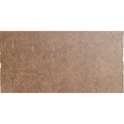 "Emser Tile Genoa 12"" x 24"" Glazed Porcelain Tile in Sauli"