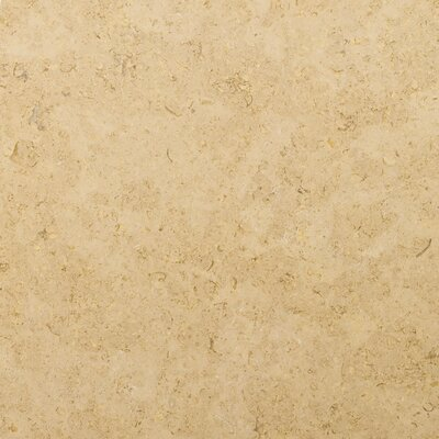 "Emser Tile Spada Brown 18"" x 18"" Honed Limestone Tile in Spada Brown"