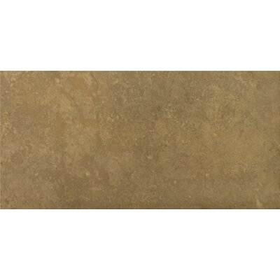 "Emser Tile Madrid 7"" x 13"" Glazed Porcelain Tile in Dorada"