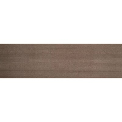 "Emser Tile Perspective 6"" x 24"" Glazed Porcelain Tile in Brown"