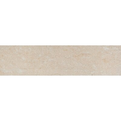 "Emser Tile Park Avenue 8"" x 32"" Porcelain Tile in Marfil"