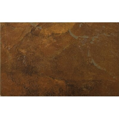 "Emser Tile Bombay 13"" x 20"" Porcelain Floor Tile in Thane"