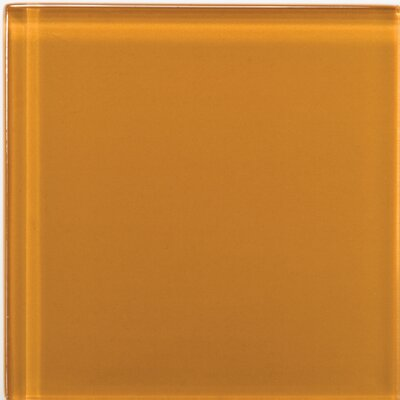 "Emser Tile Lucente 4"" x 4"" Glossy Field Tile in Empire Gold"