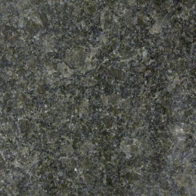 "Emser Tile Natural Stone 12"" x 12"" Granite Tile in Coffee Brown"