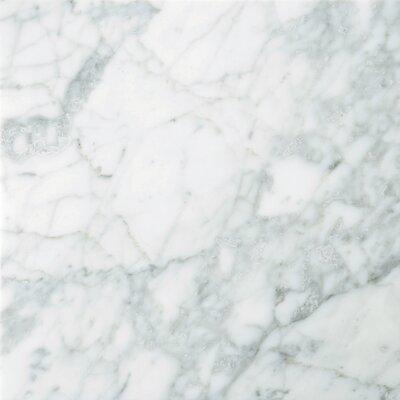 "Emser Tile Natural Stone 12"" x 12"" Marble Tile in Nantes"