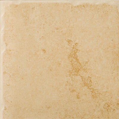 Emser Tile Genoa 7 X 7 Glazed Porcelain Floor Tile In Albergo