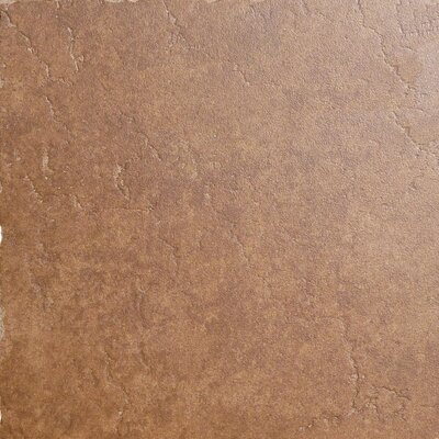 "Emser Tile Genoa 20"" x 20"" Glazed Porcelain Floor Tile in Sauli"