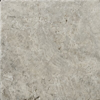 "Emser Tile Natural Stone 8"" x 8"" Tumbled Travertine Tile in Silver"