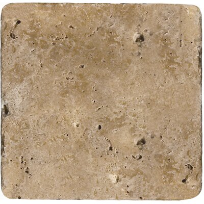 "Emser Tile Natural Stone 4"" x 4"" Tumbled Travertine Tile in Mocha"