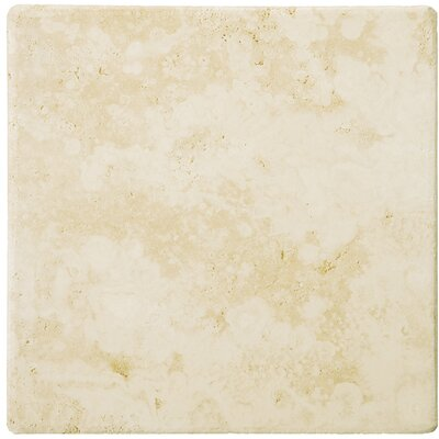 "Emser Tile Natural Stone 24"" x 24"" Tumbled Travertine Tile in Ancient Beige"