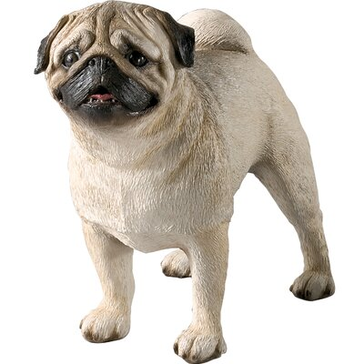 Sandicast Original Size Pug Sculpture in Fawn
