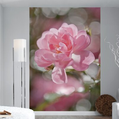 Brewster Home Fashions Komar Bouquet 4-Panel Wall Mural