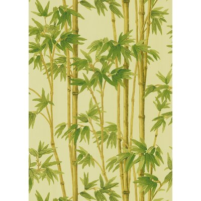 Brewster Home Fashions Echo Design Bamboo Wallpaper in Ivory