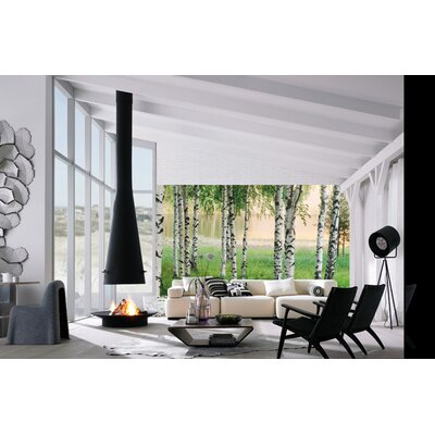 Ideal decor nordic forest large wall mural wayfair for Brewster wall mural