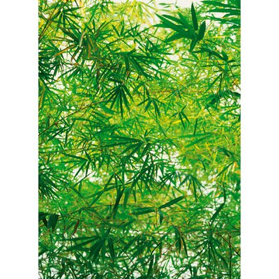 Ideal Decor Bamboo Wall Mural