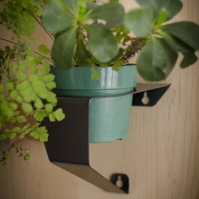 Decorpro Air Pot Hanger