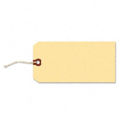 Avery Paper / Twine Shipping Tags