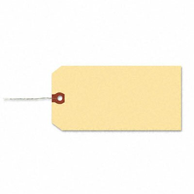 Avery Shipping Tags, 1000/Box