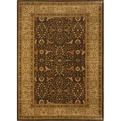 Home Dynamix Antiqua Brown/Cream Rug