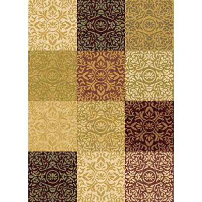 Evolution Multi-Color Rug