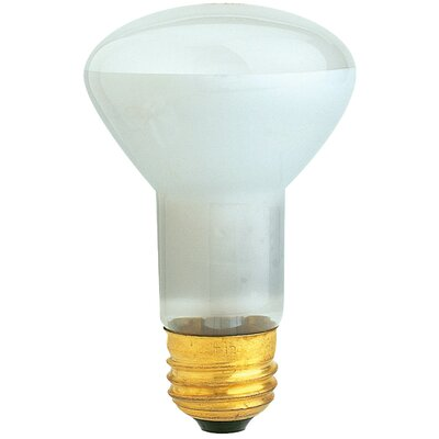 FeitElectric Reflector Spot Light Bulb