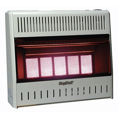 World Marketing 25,000 BTU Infrared Wall Propane Space Heater