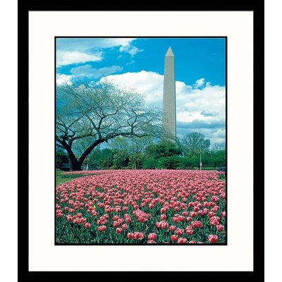 Washington Monument I Framed Photograph