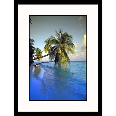 Indian Ocean Palm Trees Framed Photograph