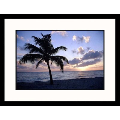 Silhouette of Palm Tree on Beach Framed Photograph