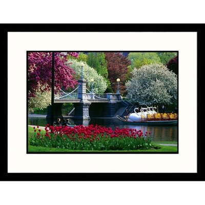 Great American Picture Boston Public Garden Framed Photograph